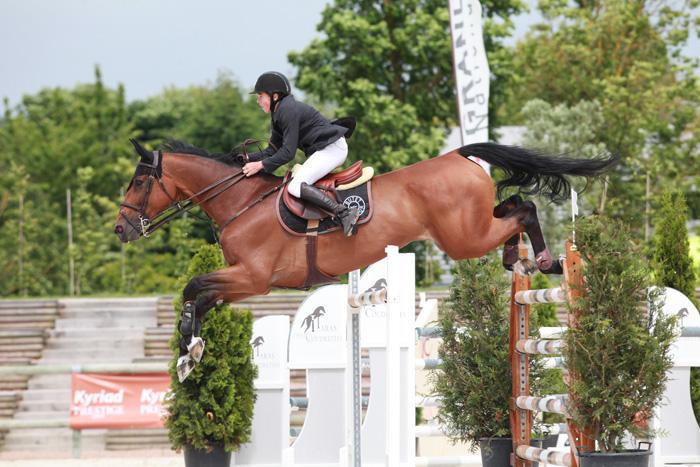 chevaux sport