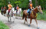 Endurance en forêt d'EAWY 2016
