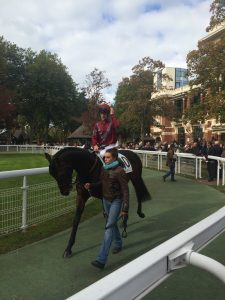 GALOP-EXPO-DEAUVILLE (10)