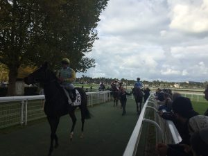 GALOP-EXPO-DEAUVILLE (7)