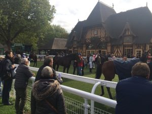 GALOP-EXPO-DEAUVILLE (9)
