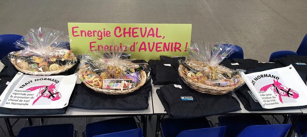 Récompenses-offertes-par-Trait-Normand-et-Conseil-des-Chevaux-de-Normandie