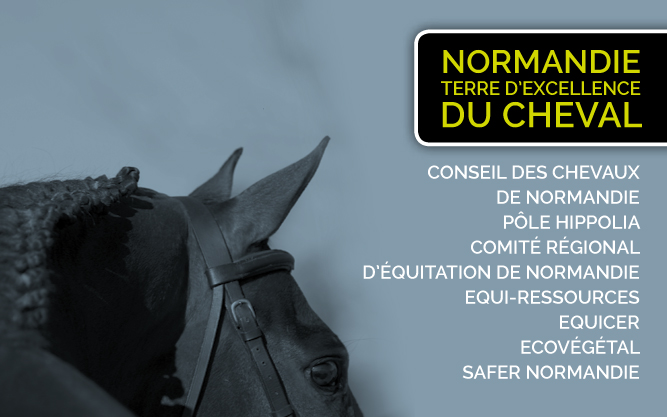 Normandie-terre-excellence-cheval-EQUI-SEINE