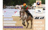 affiche-championnat-Pony-Games-2017-Normandie