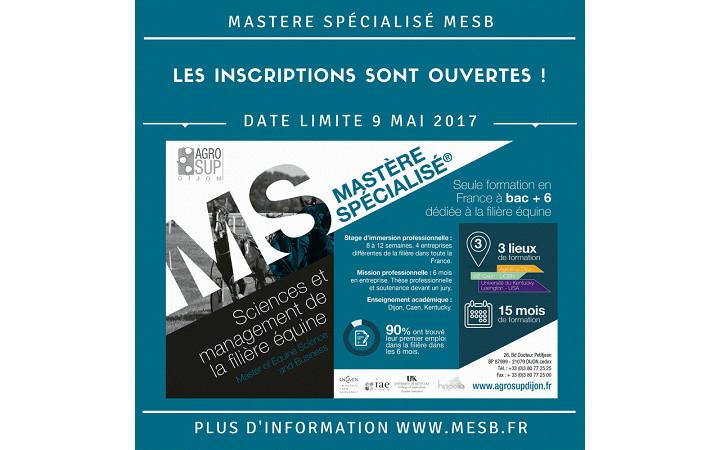 mesb-recrutement-2017