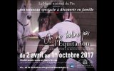 spectacle-haras-du-pin-2017