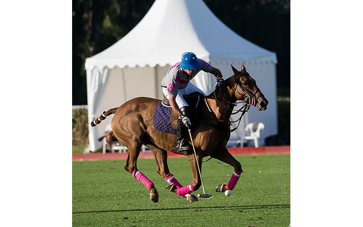 Barriere-deauville-polo-cup-2017