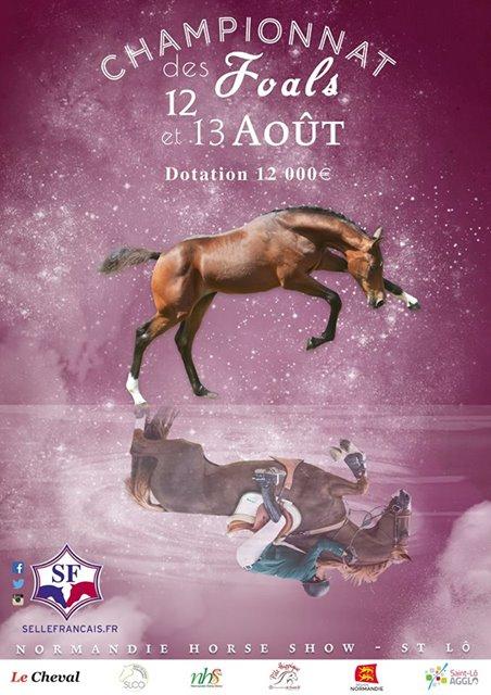 championnat-france-foals-NHS-2017