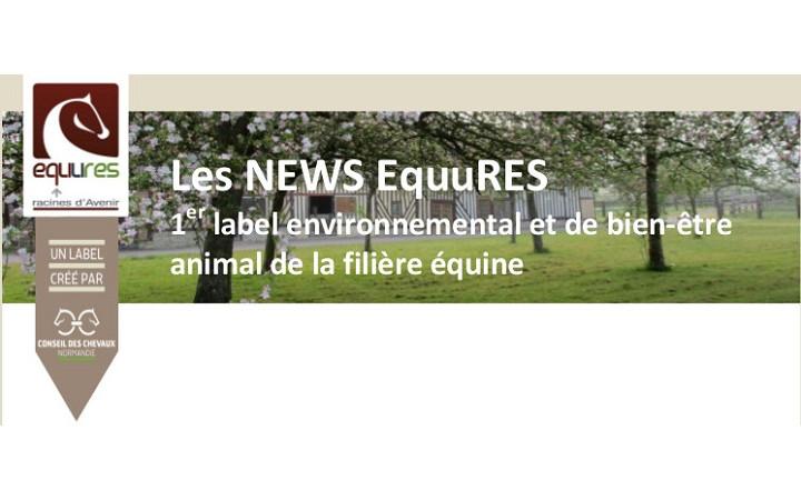 Newsletter-EquuRES-2017-n1