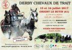 Affiche-derby-chevaux-trait-origny-le-butin-2017