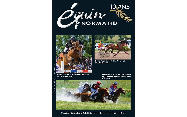 Equin-normand-ete-2017