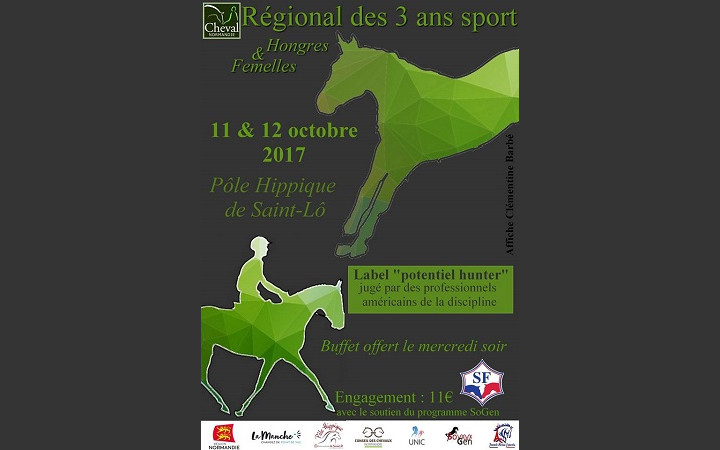 Championnat-3-ans-2017-Cheval-Normandie