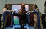 cheval_veterinaire-normandie-2020