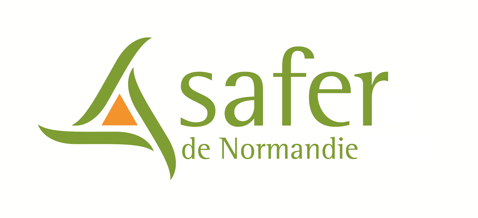logo-safer