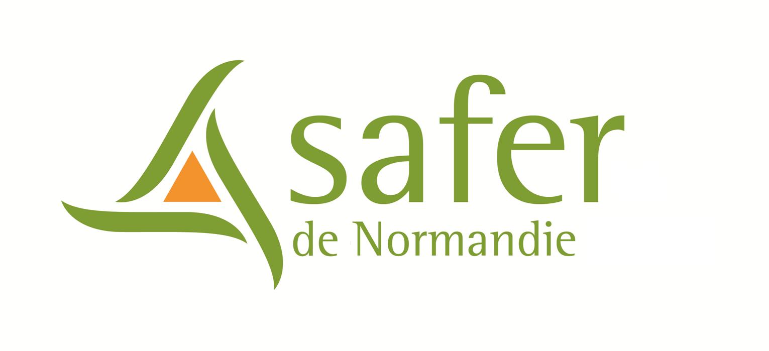 logo-safer