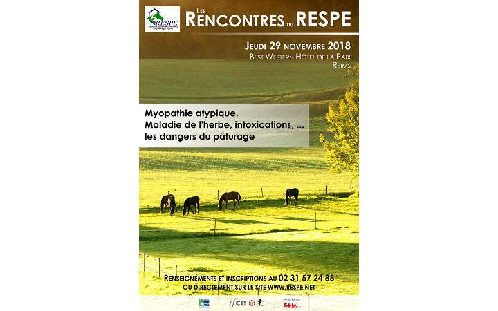 affiche-rencontre-RESPE-2018-une