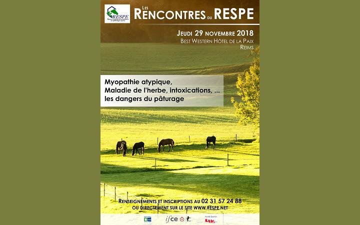 affiche-rencontre-RESPE-27112018