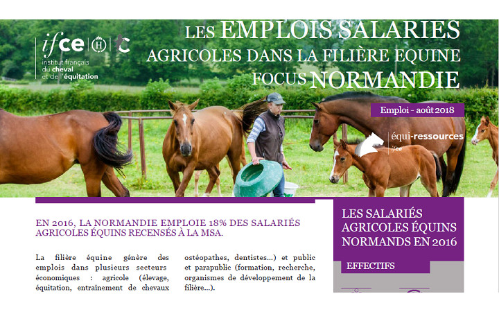 publication-equiressources-aout-2018-emplois-salaries-normandie