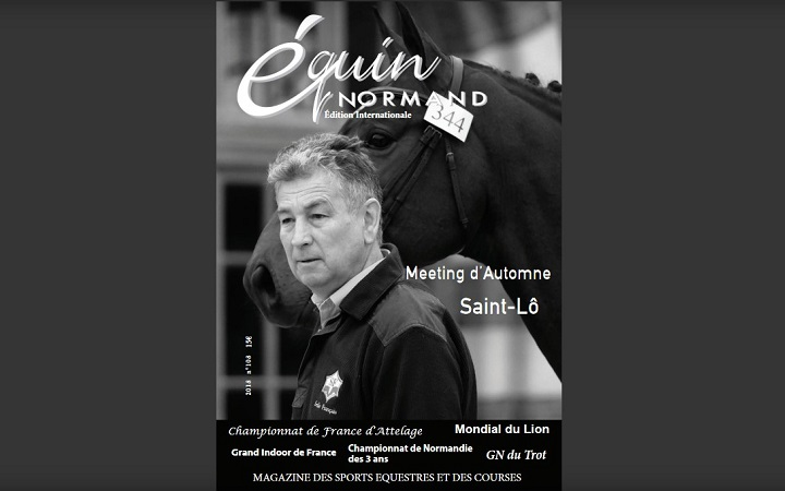 equin-normand-108