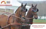 national d'attelage evreux conseil des chevaux normandie