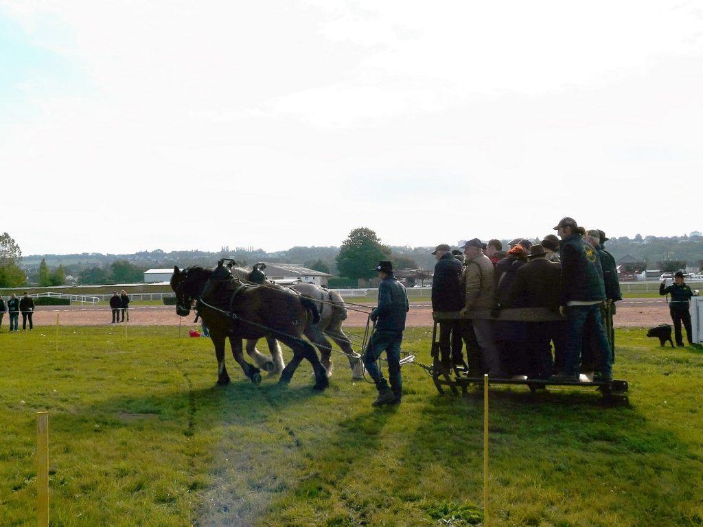 Léo-Ricard-chariot-public