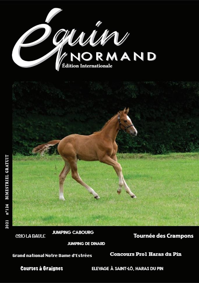 Equin normand D'août 2021 est sorti - Conseil des Chevaux ...